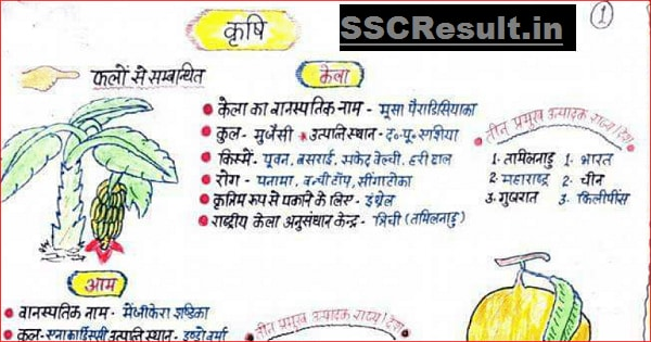 BSC Agriculture notes PDF Download in Hindi